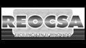 logo de Renovadora y Multiservicios de Occidente