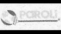 logo de Quimicos Paroli