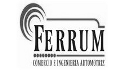 logo de Comercio e Ingenieria Automotriz Ferrum